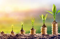 Cabinet ARDOUREL & MATHONIER - TPE et PME : bénéficiez du prêt croissance Bpifrance et financez vos projets de développement !