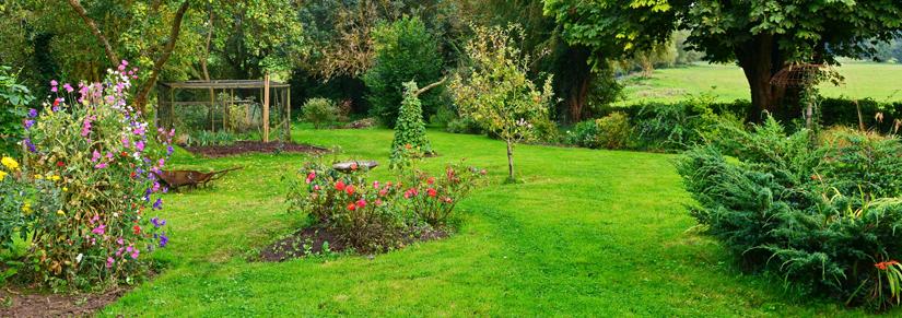 - Que faire au jardin au mois d'Avril ?